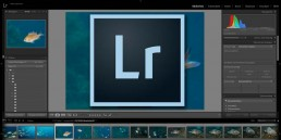 Adobe Lightroom Alternativ