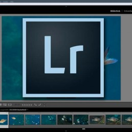 Adobe Lightroom Alternativ
